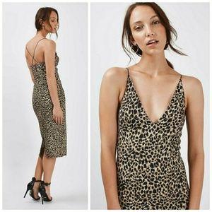 Topshop Dresses - Topshop Leopard Print Bodycon Dress